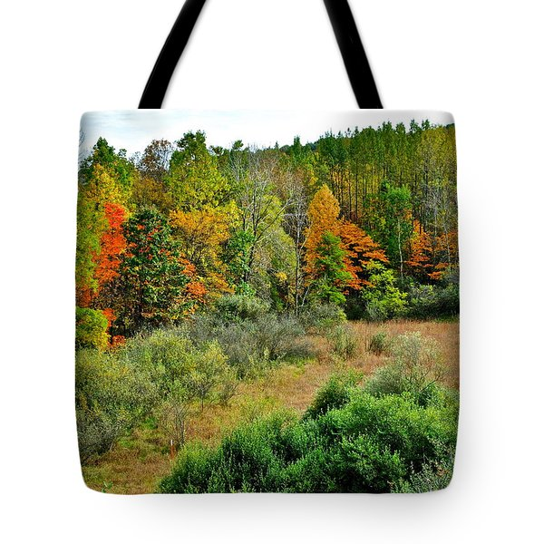 A Lofty Perch Tote Bag by Frozen in Time Fine Art Photography