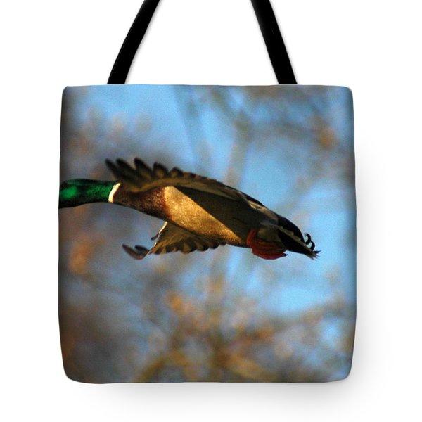 A Mallard Tote Bag by Raymond Salani III