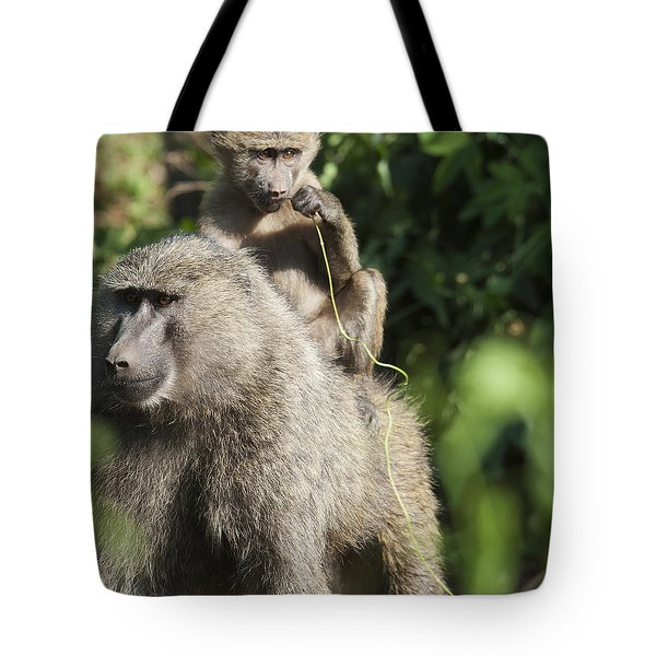 A Monkey And Its Baby Sitting On Her Tote Bag by Diane Levit
