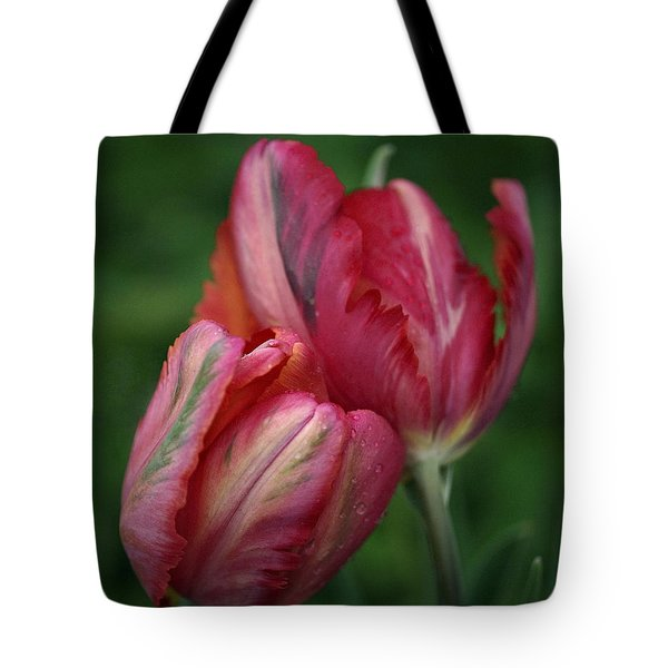 A Pair Of Tulips In The Rain Tote Bag by Rona Black