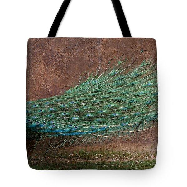 A Peacock Tote Bag by Ernie Echols