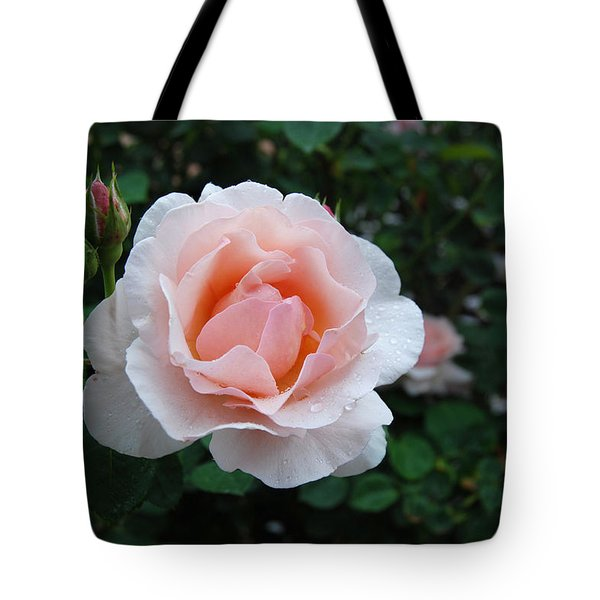A Pink Rose For You Tote Bag by Eva Kaufman