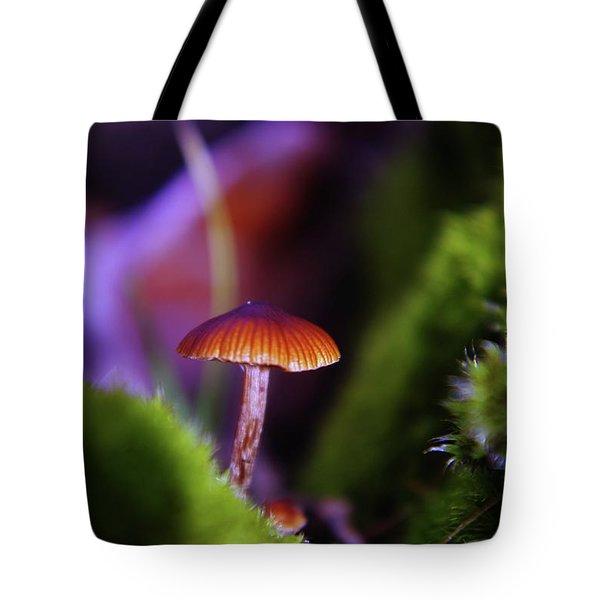 A Red Mushroom  Tote Bag by Jeff Swan