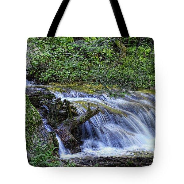 A Restful Stream Tote Bag by Priscilla Burgers