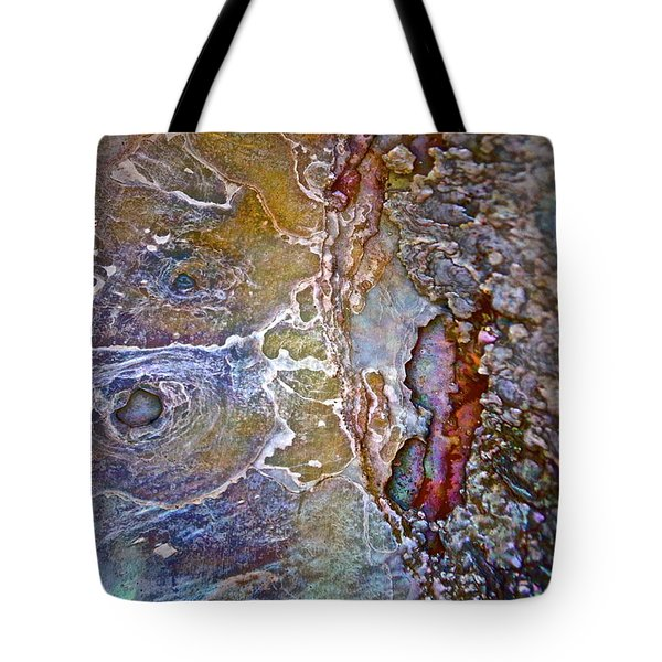 A Secret Beneath The Surface Tote Bag by Gwyn Newcombe