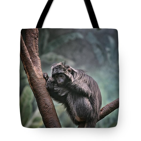 A Sense of Sadness Tote Bag by Karol  Livote