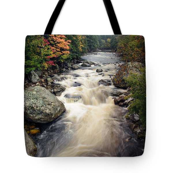 A Touch Of Fall Tote Bag by Mark Papke