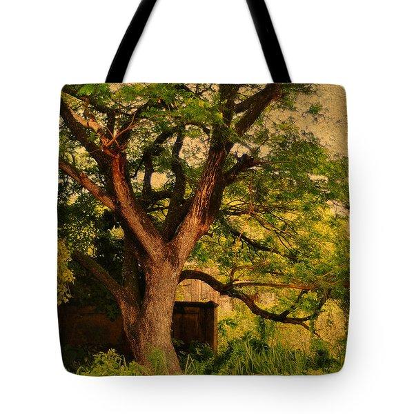 A Tree Tote Bag by Jenny Rainbow