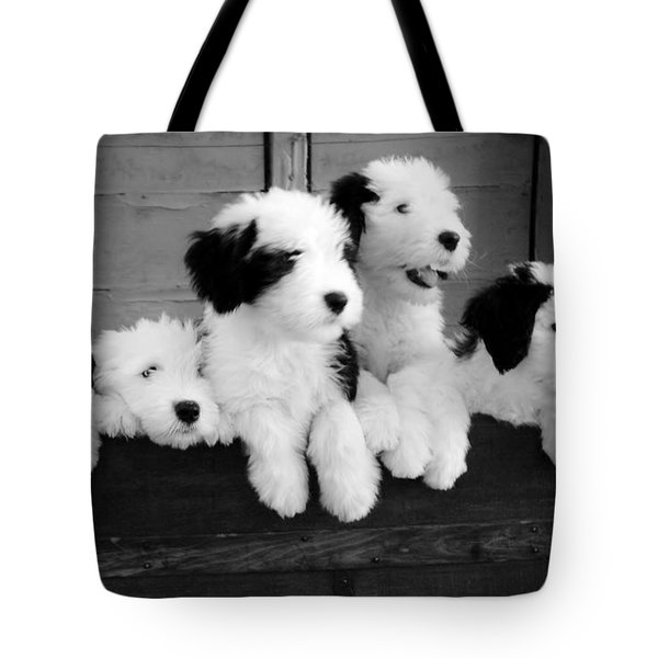 A Trunk Full Tote Bag by Kathleen Struckle