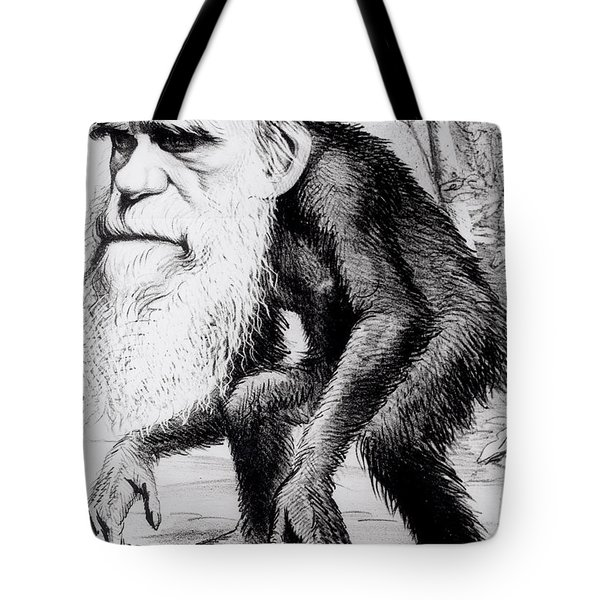 A Venerable Orang Outang Tote Bag by English School