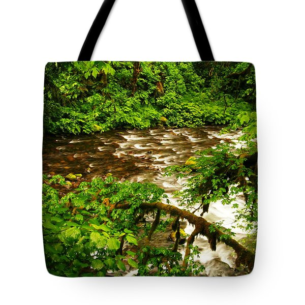 A View Of Eagle Creek Tote Bag by Jeff Swan