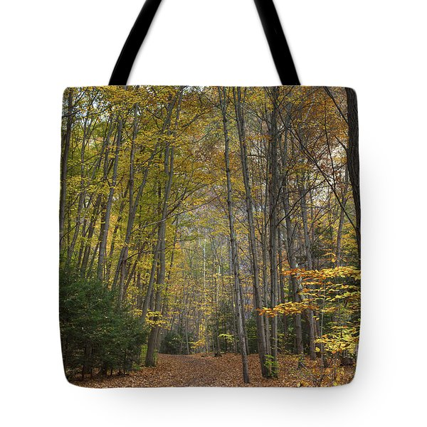 A Walk In The Woods II Tote Bag by Michele Steffey