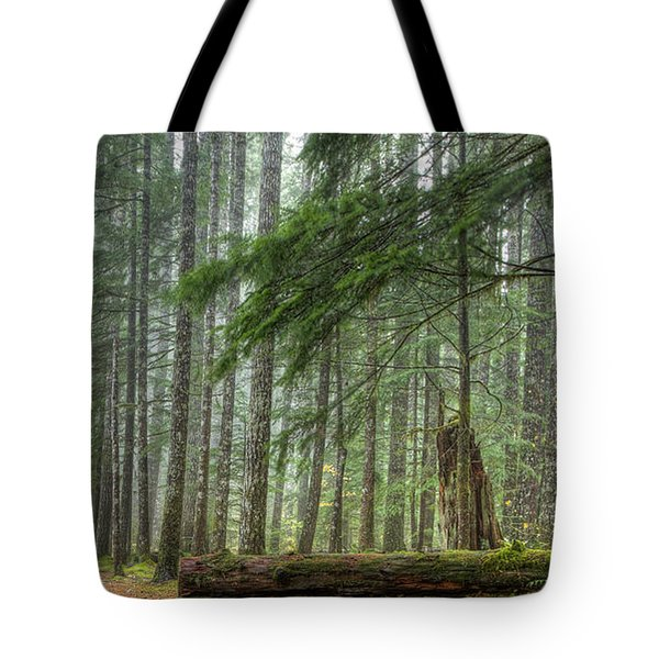 A Walk Through the Forest Tote Bag by Jean Noren