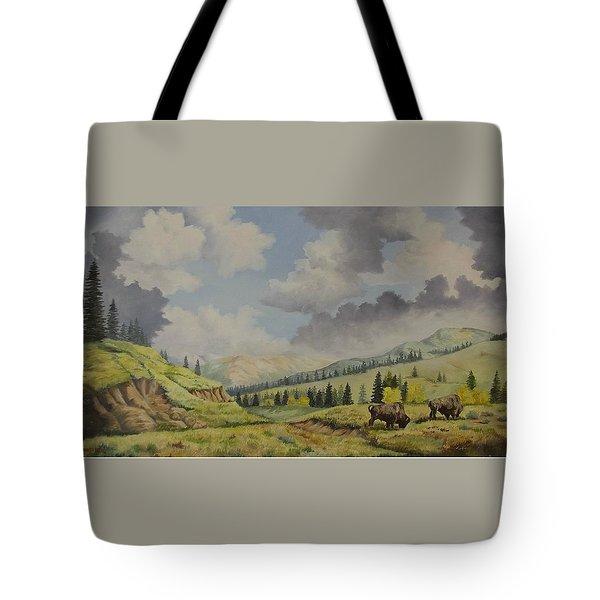 A Warm Day At Yellowstone Nat. Park Tote Bag by Wanda Dansereau