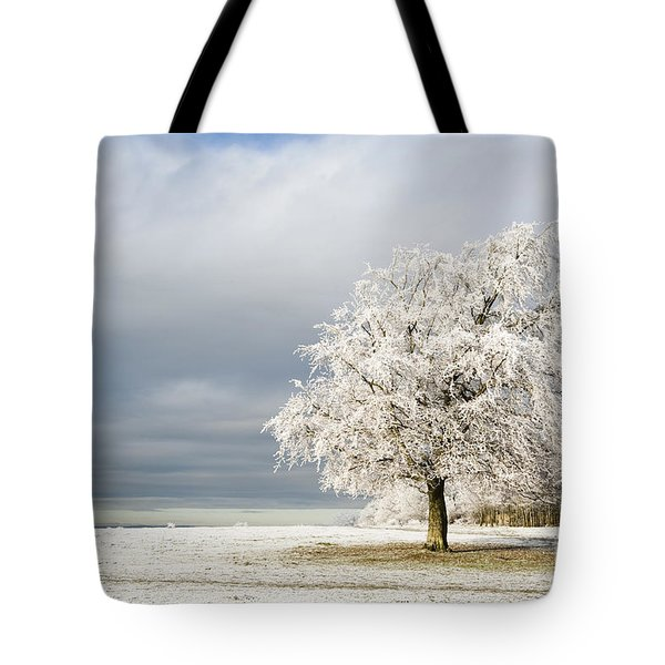 A Winter's Morning Tote Bag by Anne Gilbert