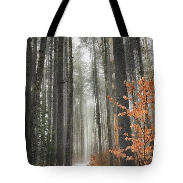 A Winters Path Tote Bag by Bill  Wakeley