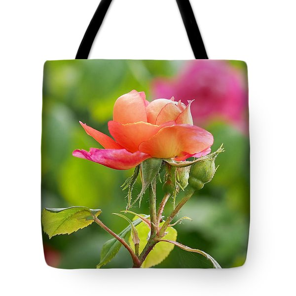 A Young Benjamin Britten Rose Tote Bag by Rona Black