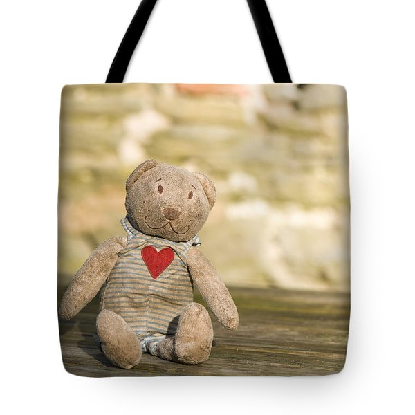 Abandoned Bear Tote Bag by Anne Gilbert