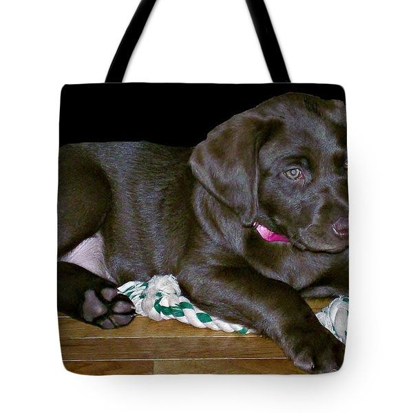 Abby Tote Bag by Barbara S Nickerson
