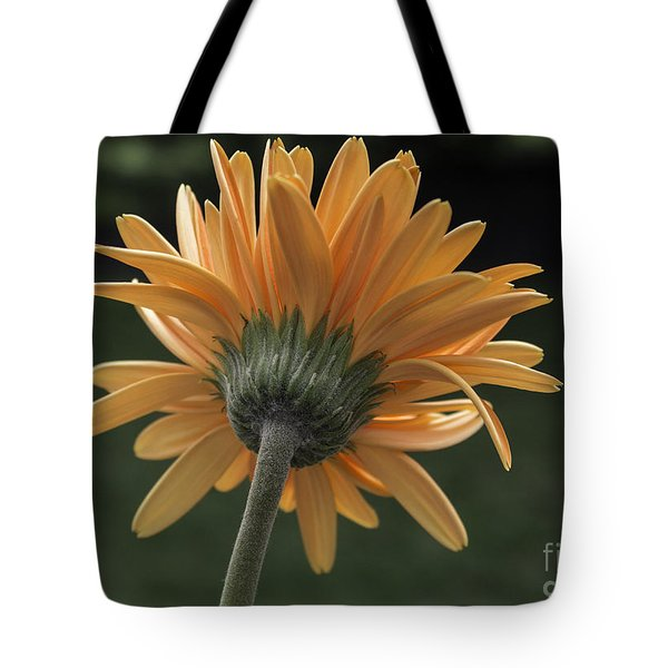 About Face Tote Bag by Arlene Carmel