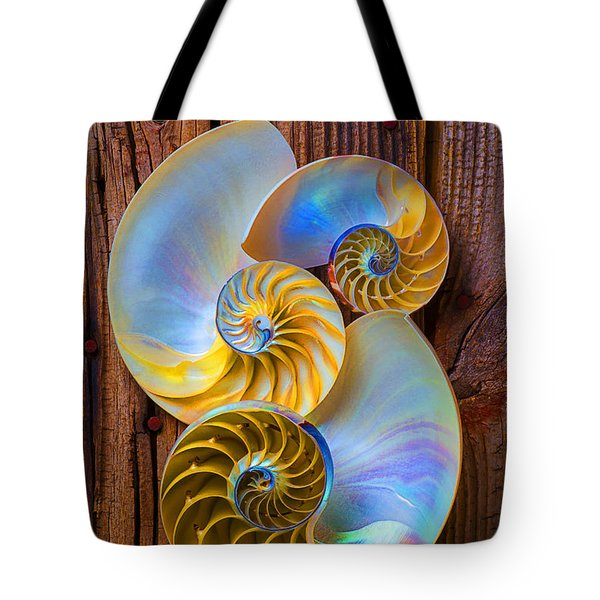 Abstract chambered nautilus Tote Bag by Garry Gay