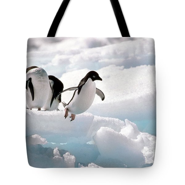 Adelie Penguins Tote Bag by Art Wolfe
