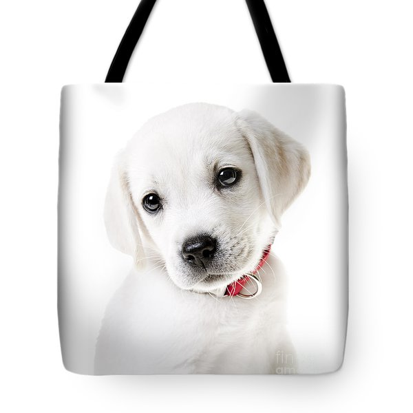 Adorable Yellow Lab Puppy Tote Bag by Diane Diederich