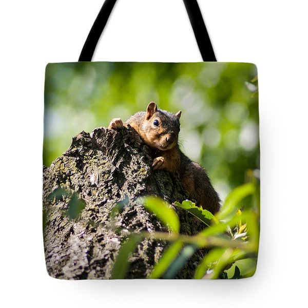 Advantage Point Tote Bag by Optical Playground By MP Ray