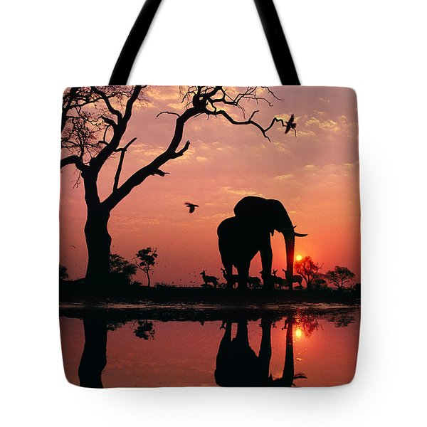 African Elephant At Dawn Tote Bag by Frans Lanting MINT Images