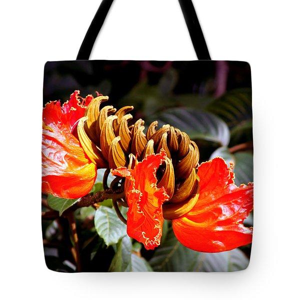 African Tulips Tote Bag by Karon Melillo DeVega