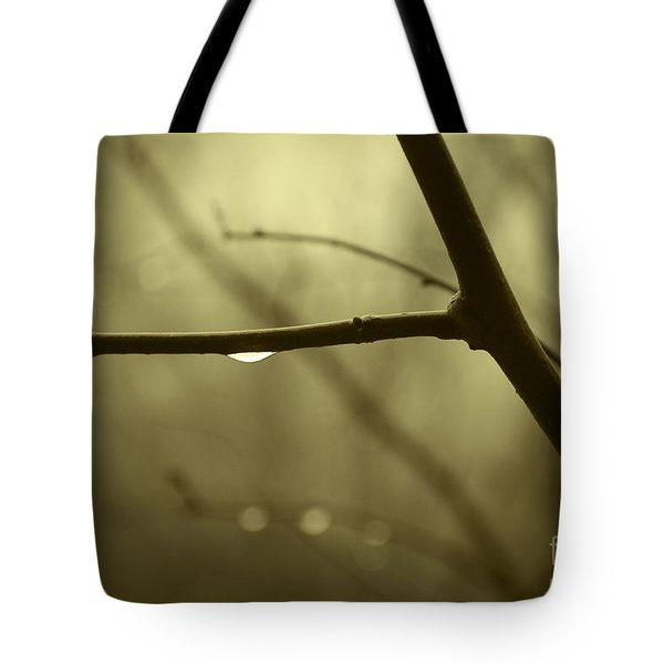 After It Rained Tote Bag by David Gordon
