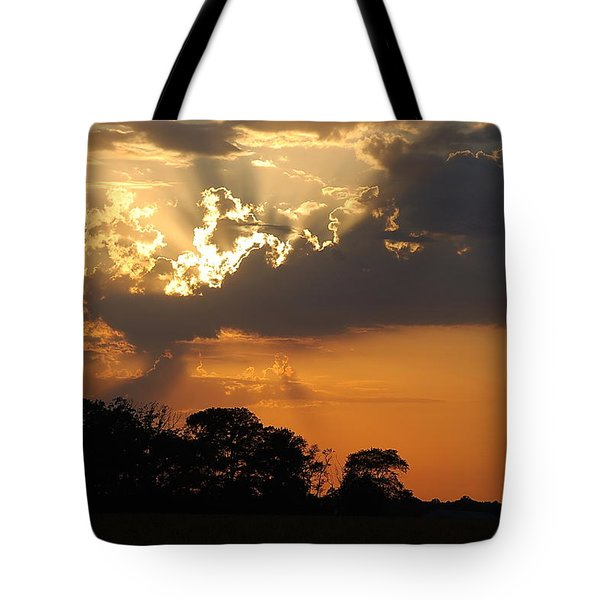 After the Storm Tote Bag by Francie Davis
