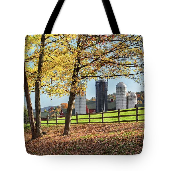Afternoon Delight Square Tote Bag by Bill  Wakeley