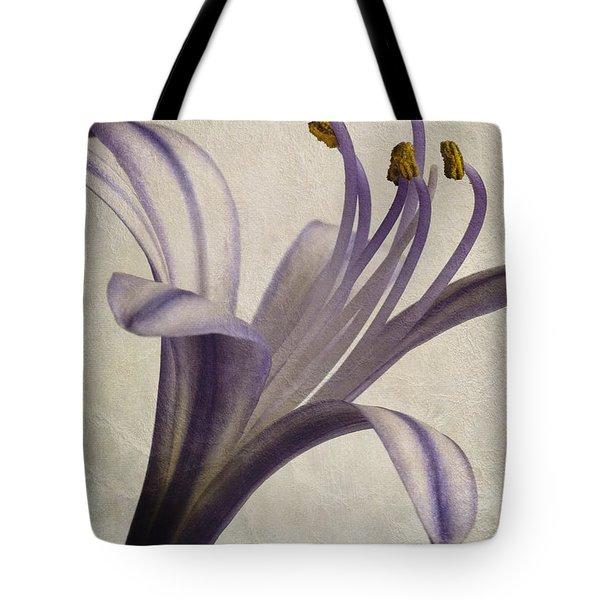 Agapanthus africanus Star Tote Bag by John Edwards