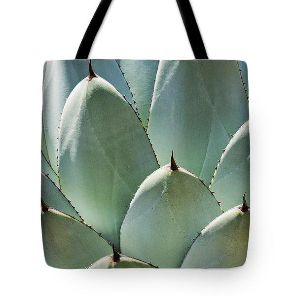 Agave Leaves Tote Bag by Kelley King