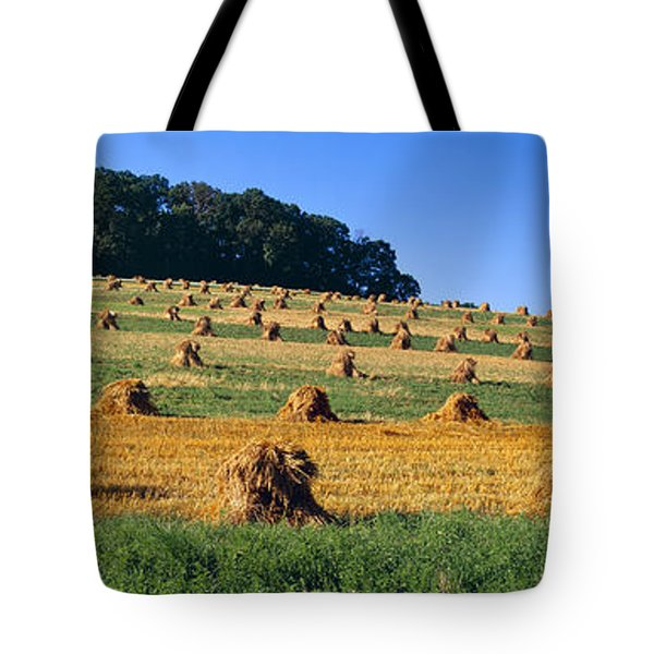 Agriculture - Contour Strips Tote Bag by Timothy Hearsum