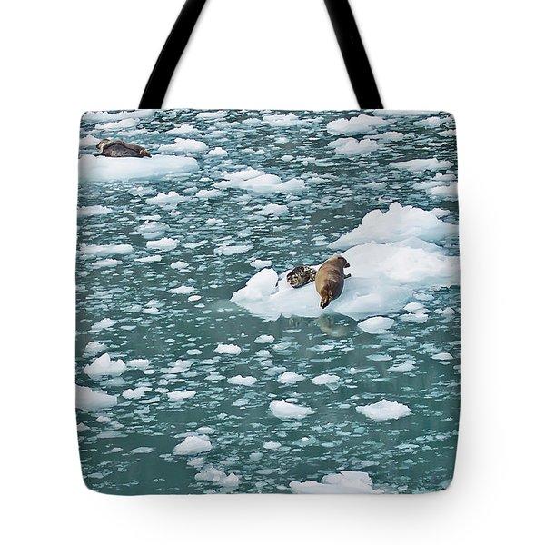 Alaska Seals Tote Bag by Aimee L Maher Photography and Art Visit ALMGallerydotcom