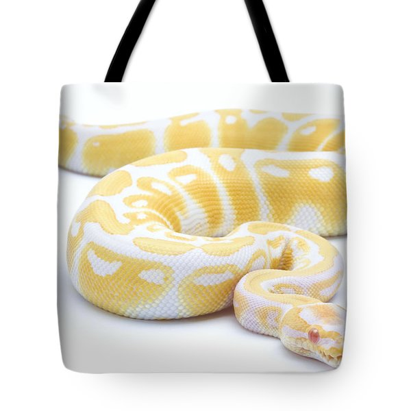 Albino Royal Python Tote Bag by Michel Gunther