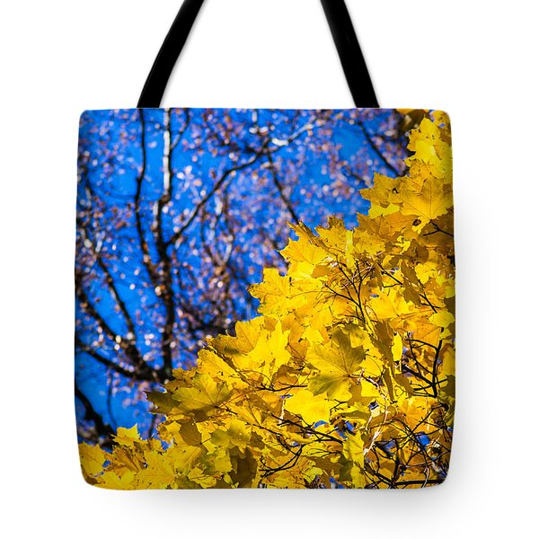 Alchemy Of Nature - Golden Streams Tote Bag by Alexander Senin