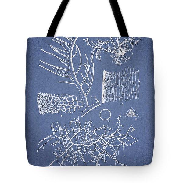 Algae Tote Bag by Aged Pixel