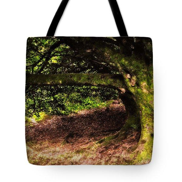 Alive Memory Of Thetrees. Glendalough. Ireland Tote Bag by Jenny Rainbow