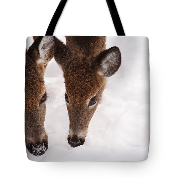 All Eyes On Me Tote Bag by Karol Livote
