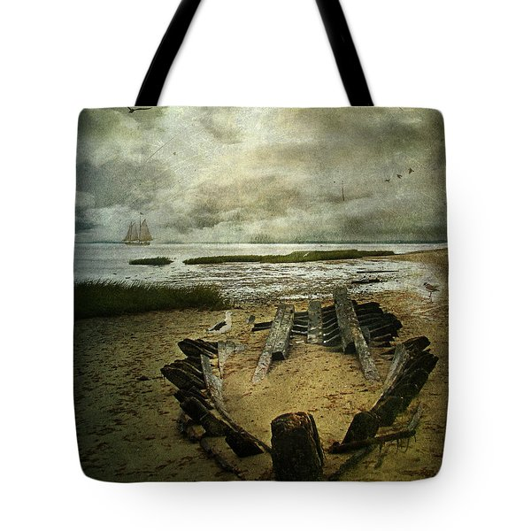 All That Remains Tote Bag by Lianne Schneider