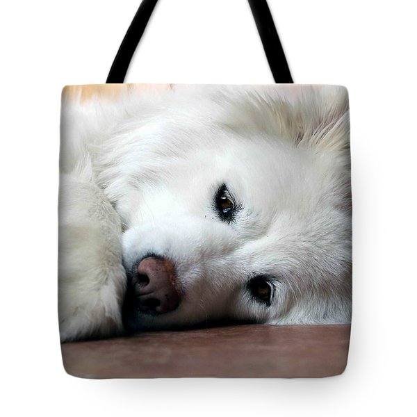 All You Need Is Love Tote Bag by Fiona Kennard