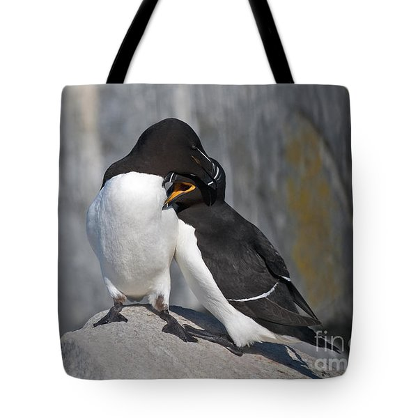 All You Need is Love... Tote Bag by Nina Stavlund