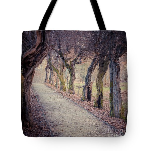 Alley - Square Tote Bag by Hannes Cmarits
