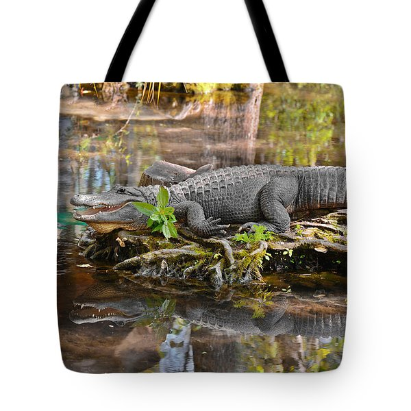 Alligator Mississippiensis Tote Bag by Christine Till