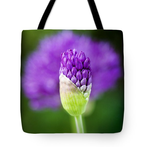 Allium hollandicum Purple Sensation Tote Bag by Tim Gainey