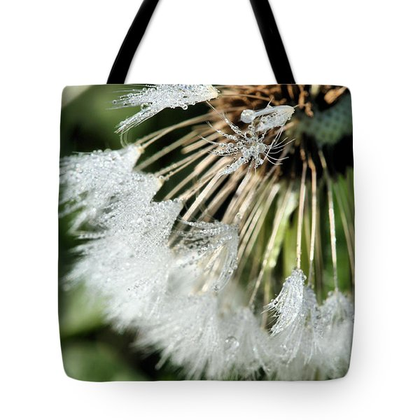 Almost Gone Tote Bag by JC Findley