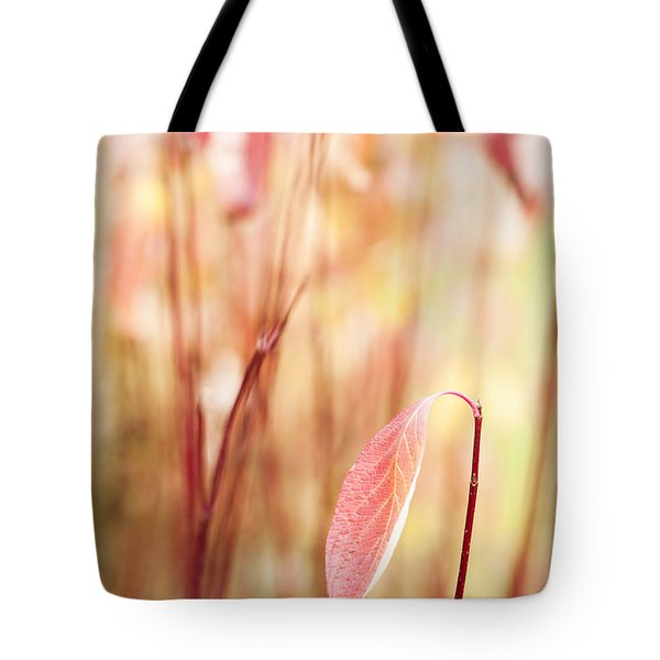 Alone Tote Bag by Anne Gilbert